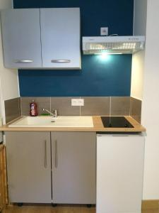 A kitchen or kitchenette at Charmant Studio proche Gare/RER Massy palaiseau