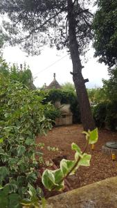Trullo Elvira