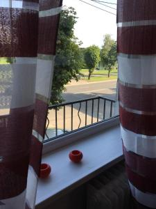 Apartments on Proletarskaya 15