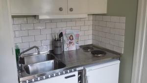 Majoituspaikan Lilla Munkhagen keittiö tai keittotila