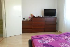 Private Apartment Max-Planck-Strasse (5738)