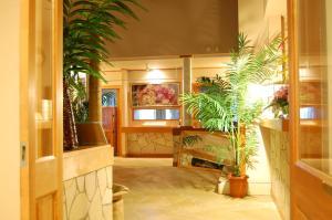 Okanoueno Hotel