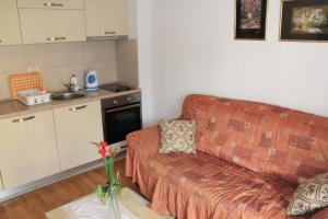 Centar New Mike Apartment