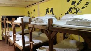 3152m Hostel