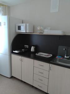 Кухня или мини-кухня в Apartment on Gogolya 50