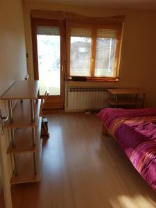 Apartman Pionir