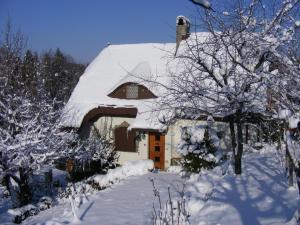 Panka House