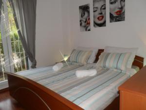 Apartment Armando