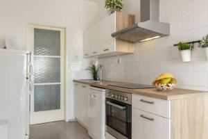 Apartment Roza廚房或簡易廚房