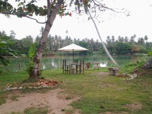 Hikkaduwa River View