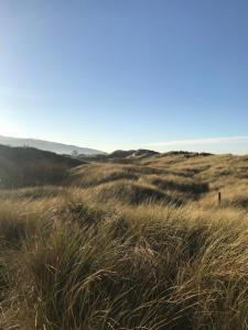 Presthaven Sands