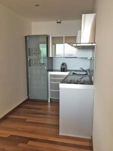 A kitchen or kitchenette at Vienna City Apartments - Kahlenberg