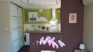 A kitchen or kitchenette at HummingBird