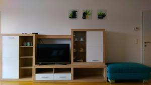 A television and/or entertainment center at Viennes comfortable apartment