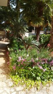 A garden outside Apartments Barbara