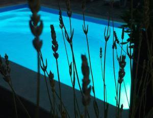 Uitzicht op het zwembad bij Apartment A&A of in de buurt