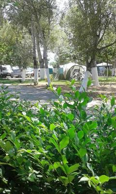 Camping Verdelis Ancient Epidauros Greece Bookingcom