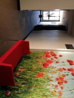 Imagen del Hotel Adelma