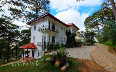 Le Olive Villa