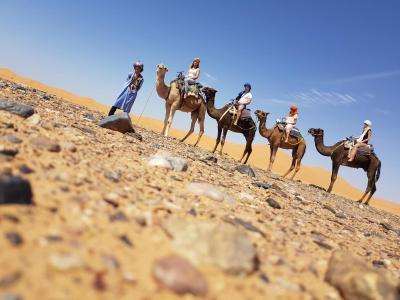 Hotel Camel Bivouac Merzouga, Morocco - Booking com