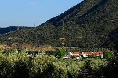Foto del Amalurra Granada