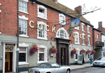 Image result for cock hotel stony