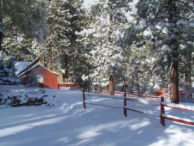 Golden Bear Cottages Big Bear Lake Ca Booking Com