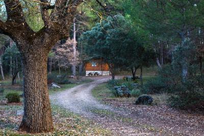Foto del El Llano de los Conejos