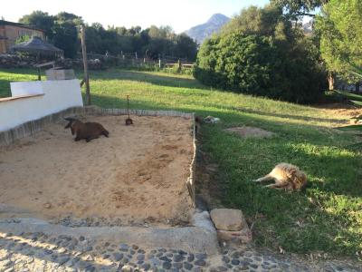 Andalucia Rural imagen