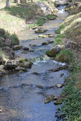 Bonita foto de Albergue Camarena De La Sierra
