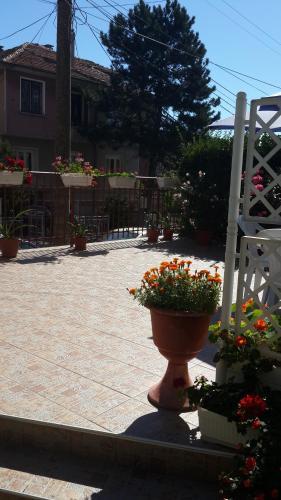 Къща за гости Guest House Ioanna - Обзор