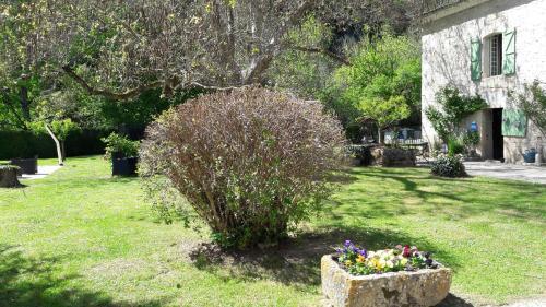 Jardin de l'établissement Mas de Lucet