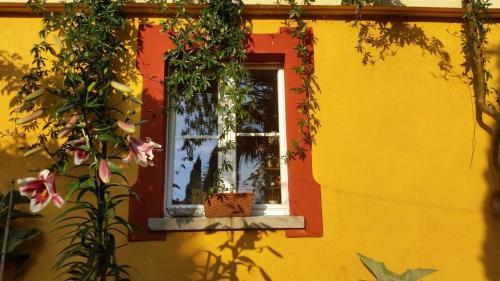 Casa Annoni