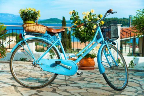 Ποδηλασία στο San Lazzaro ή στη γύρω περιοχή