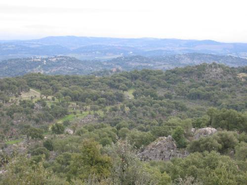 A bird's-eye view of Rústica para Férias