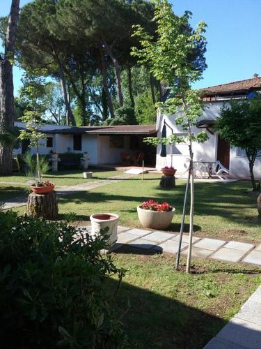 A garden outside Rosa