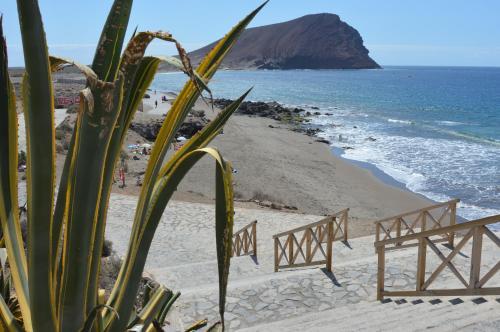 La Tejita Beach APARTMENT