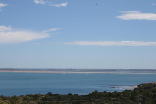 Punta Pins