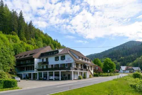 Dror's Black Forest Apartment