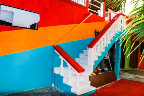Guacamaya hostel