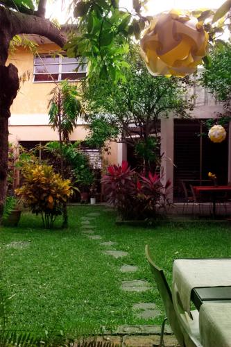 A garden outside Casa Frolaz