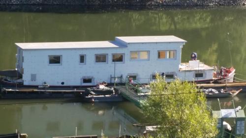 Sportboot Zander