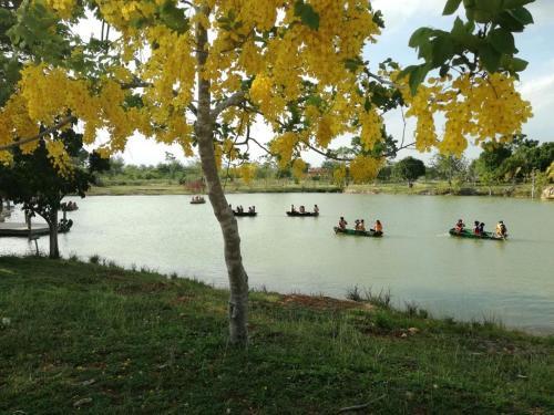 Natural Reserve - Yucatán Silvestre