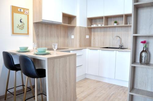 A kitchen or kitchenette at Bratislava Apartment Prievozska