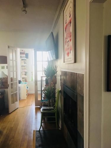 Cute sunny apartment in Wicker Park