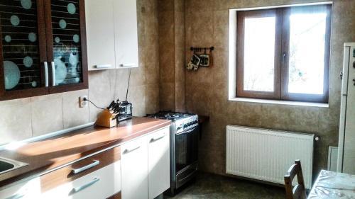 O bucătărie sau chicinetă la Vila Dodel