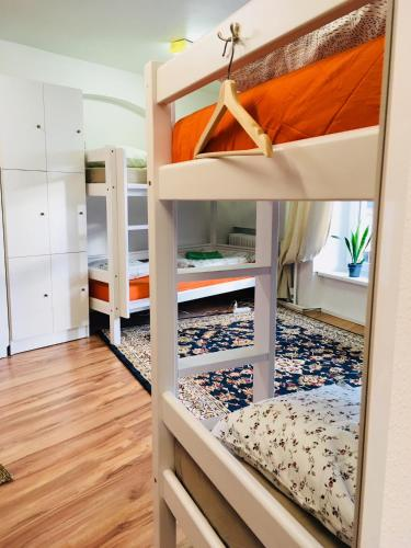A bunk bed or bunk beds in a room at Tree House