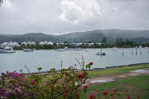 Pollyanna Tropical Retreat Seawind 1BD Condo OLR