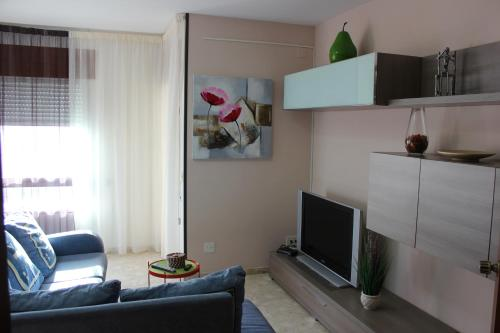 A television and/or entertainment center at Apartament Llorenç
