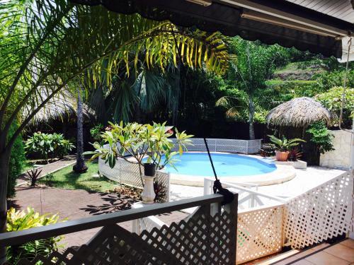 The Palmtrees House